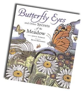 ButterflyCover